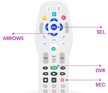 TV Multi Room DVR